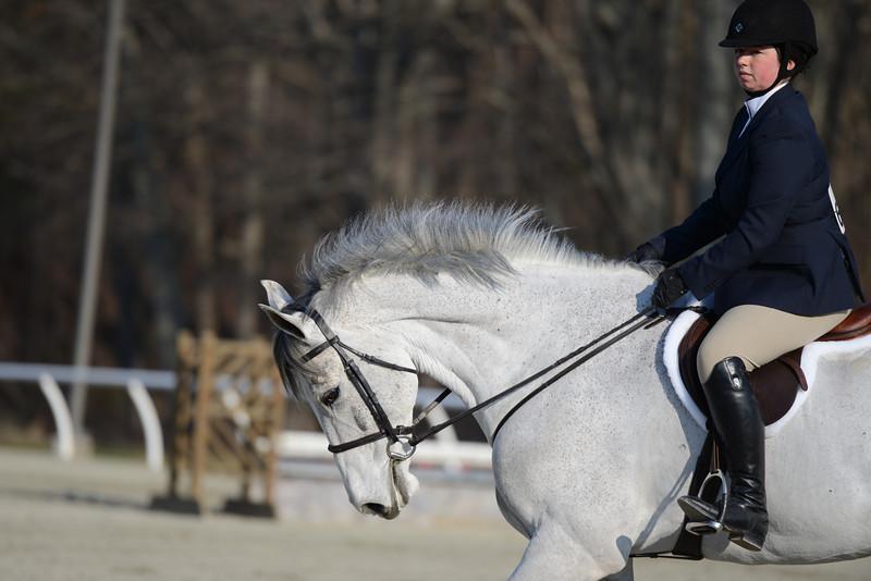 Rider: Shannon Bower<br /> Horse: Quintessential<br /> School: Bridgewater College