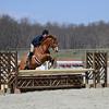 Rider: Lauren Dees<br /> Horse: Sunny Banks<br /> School: Randolph College