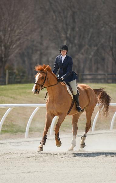 Rider: Elizabeth Hansbrough<br /> Horse: Love Z<br /> School: Sweet Briar College