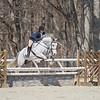 Rider: Shannon Bower <br /> Horse: Quintessential <br /> School: Bridgewater College