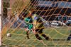 101610e-Blue-Green-Soccer-2521