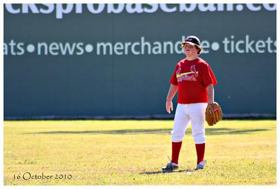 """Springfield Metro Baseball * 2010"""