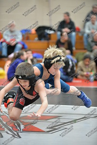 Springford Youth Wrestling v Boyertown