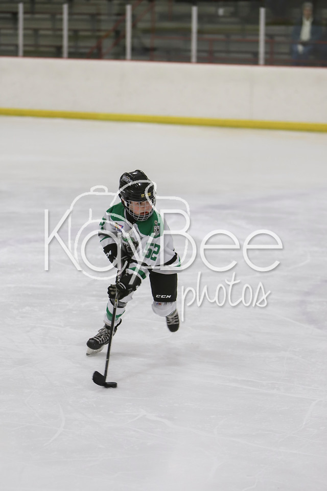 St. Jude Knights Hockey 1-21-18