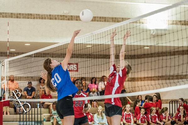 2015 MS VB Lions vs Brookstone