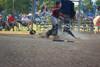 Stallions Rocky_0851