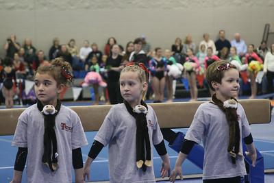 State Gymnastics 2010 Level 5