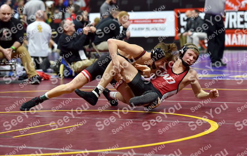 -Messenger photo by Britt Kudla<br /> Drake Ayala of Fort Dodge wrestles against Western Dubuque Dawson Biermann during 3A Quarterfinal on Friday at Wells Fargo Arena