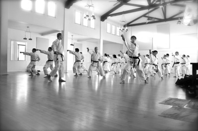 Steve Ubl Sensei Seminar Jun 5th, 2009 at JKASV dojo.http://www.jkasv.com