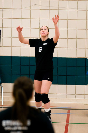 Stingers Volleyball