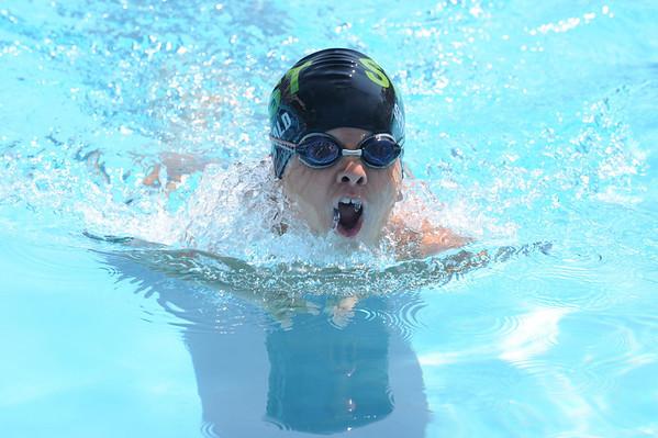 Suburban Swim Association 2010 Championships - Saturday, 7-31-10 Race 217-4 to 221
