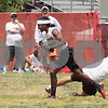 NHS_7v7_sherwood-0135