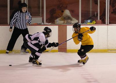 Summit High School 2008-9 Hockey