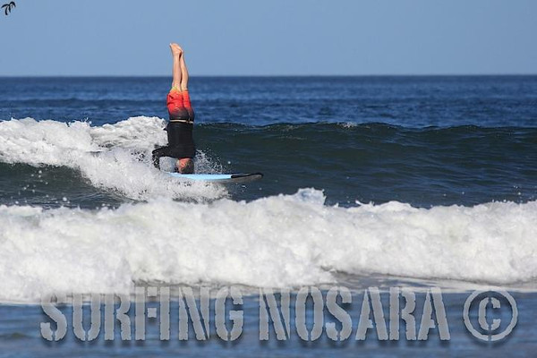 Guest Surf Photography