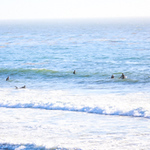 10-13-20 Surf Sewers with friends-