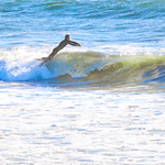 10-13-20 Surf Sewers with friends-6