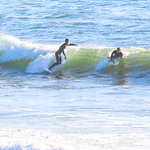10-13-20 Surf Sewers with friends-9