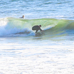 10-13-20 Surf Sewers with friends-13
