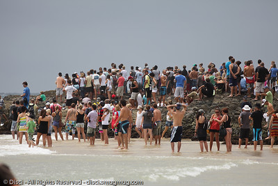 Spectators - Quiksilver Pro, Snapper Rocks, 27 February 2010