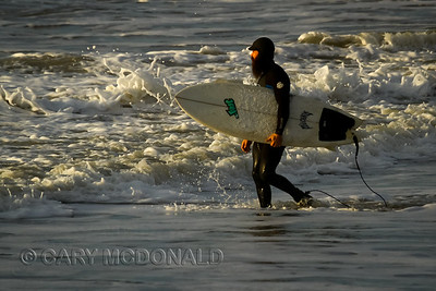 Surfing contest  Folly Beach Washout