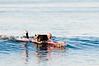 101010-Surfing-006