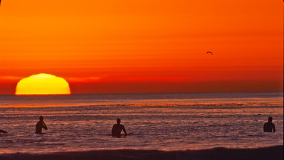 Surfers enjoy the sunset.  North Swami's, Encinitas, California.