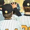Cougars Playing at NYO 7232