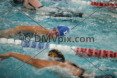 DJO Swim & Dive (27 Jan 2018)
