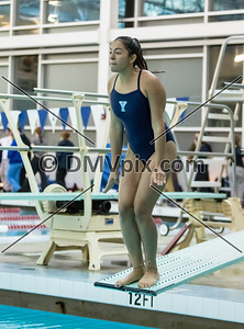 Madison @ Yorktown Swim & Dive (08 Jan 2016)