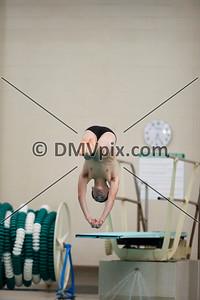 Wakefield Swim and Dive (10 Jan 2020)