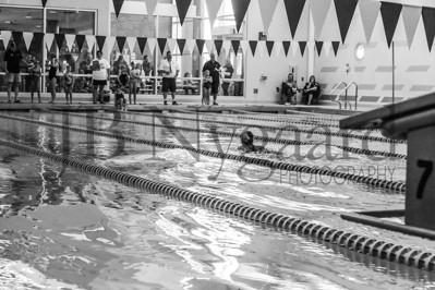 11-15-14 Lima YMCA Fall Fiesta Swim meet-13