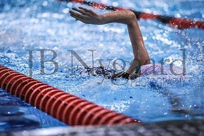3-04-17 NWO YMCA Swim CHAMPS at BG - Day 1-65
