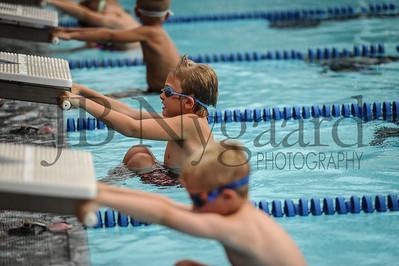 7-10-17 The great OG-Bluffton relay swim meet-21