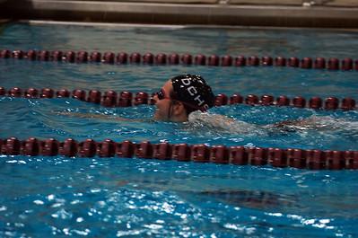 Swim Dive 2011
