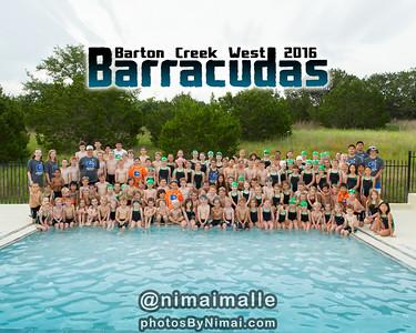 BCW_Barracudas_Team_2016-top