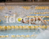 TwoRivers-SwimMeet-12-04-14-pds 035