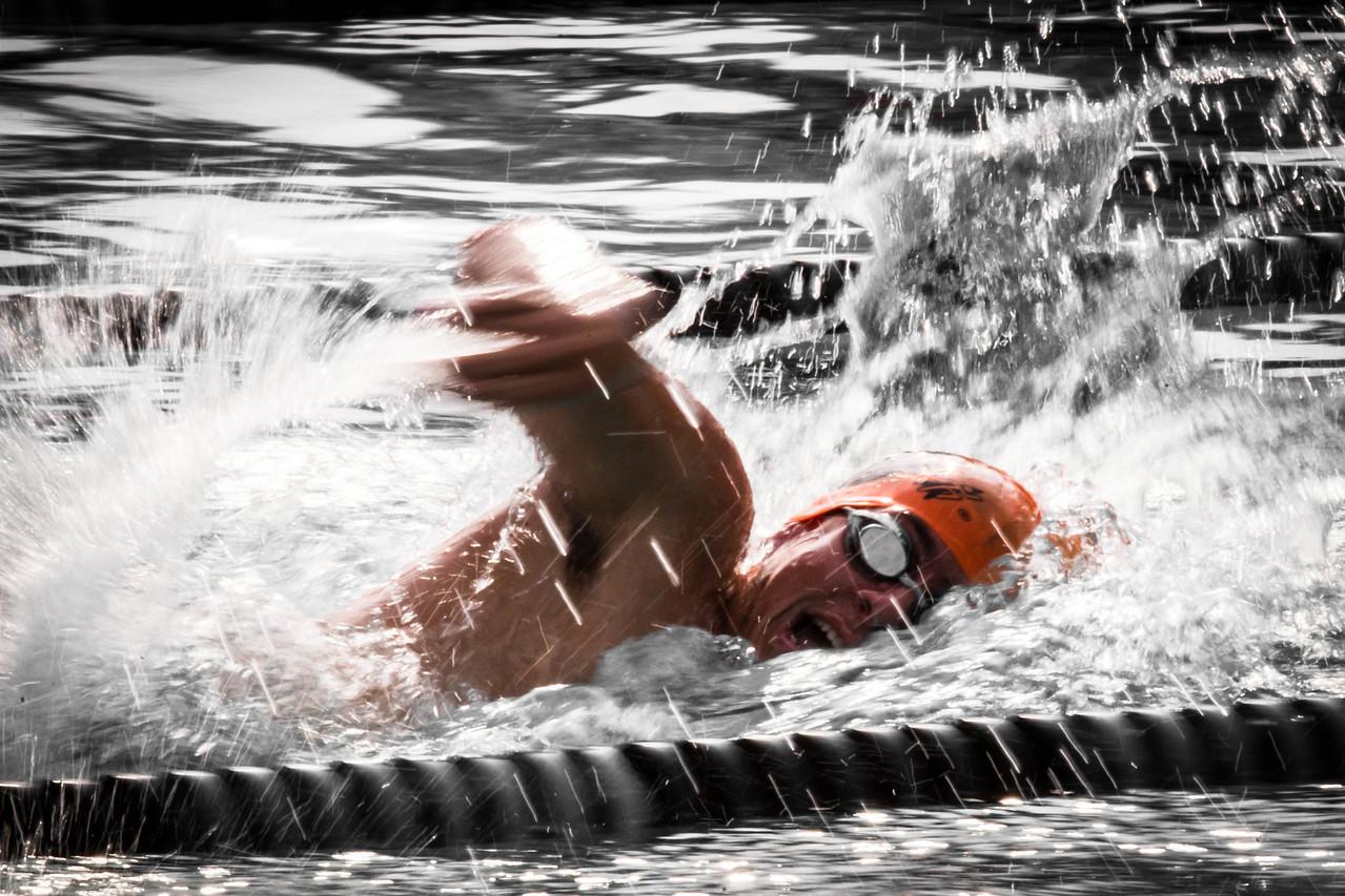 IMAGE: https://photos.smugmug.com/Sports/Swimming/2017-Seals-Action-Shots/Alex-Reed/i-bnKfX9Z/0/00d389c5/X2/A73X2049-2-X2.jpg
