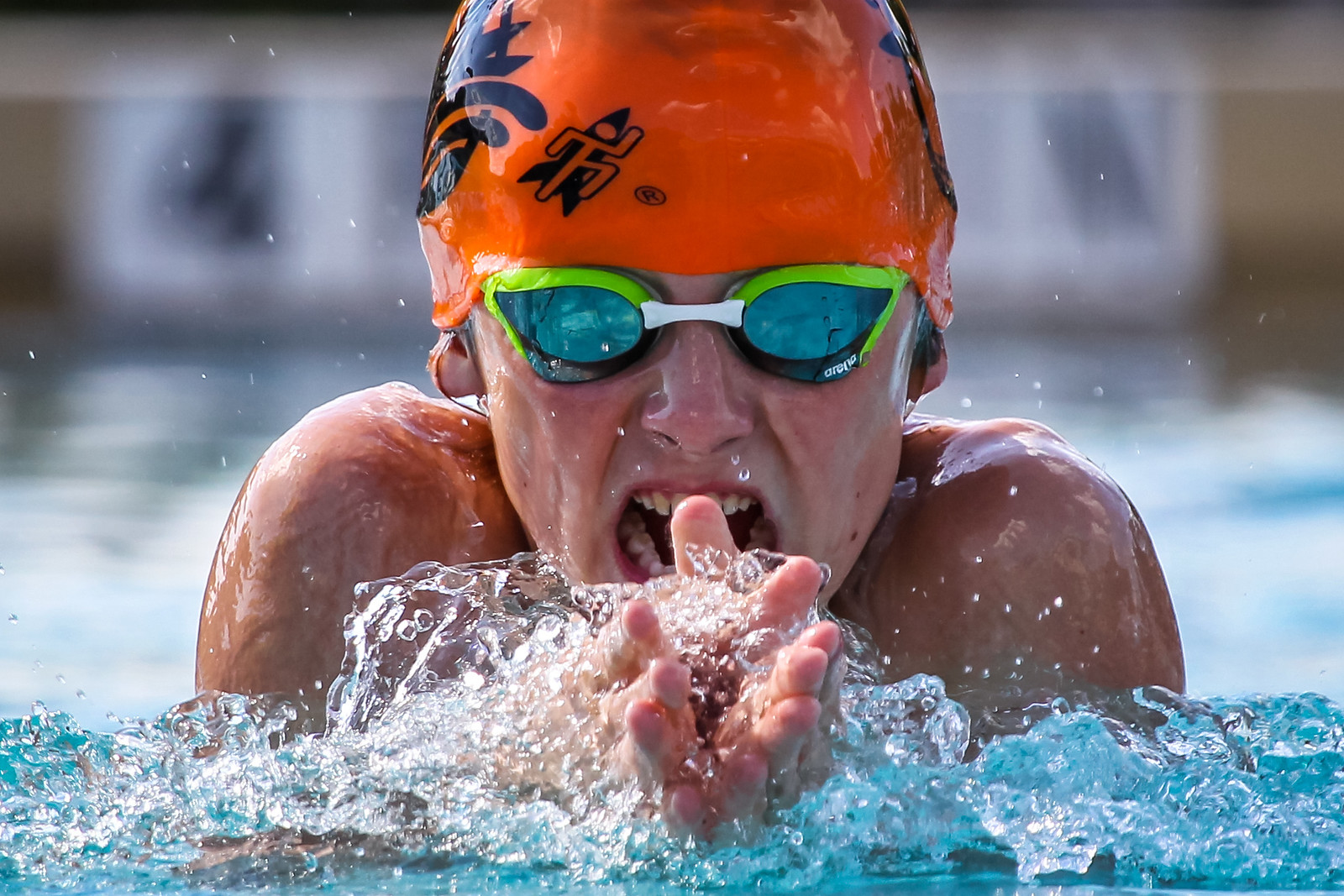 IMAGE: https://photos.smugmug.com/Sports/Swimming/2018-Seals-Action-Shots/Seals-2018-Full-Size/i-9jHDjVd/1/a9549c41/X3/A73X5422-X3.jpg