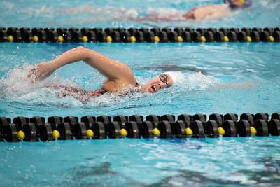 MVC Swimming & Diving Championships on Thursday, February 21, 2019. Jesse Scheve/Missouri State University