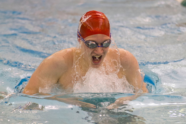 SAM HOUSEHOLDER | THE GOSHEN NEWS<br /> Goshen senior Alex Metcalfe swims the 200 yard individual medley Thursday during the Boys Swimming Sectional Preliminaries at Northridge High School.