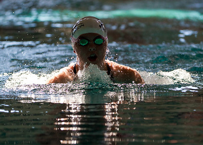 Katie emerges through a sun spot on the water during her breaststroke.