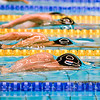 Netherlands, Amsterdam, Amsterdam Swim Meet 16-18 December 2016