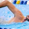 0210 d1 swim sectional 14
