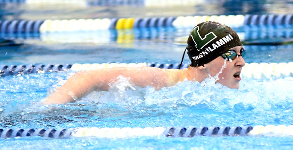 0209 swimming sectional d 1 12