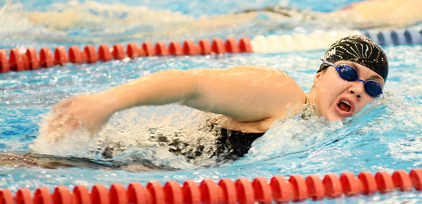 0209 swimming sectional d1 6