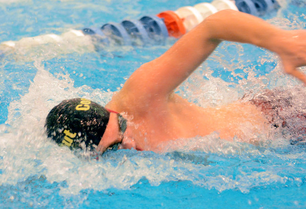 0209 d2 swim sectional 2