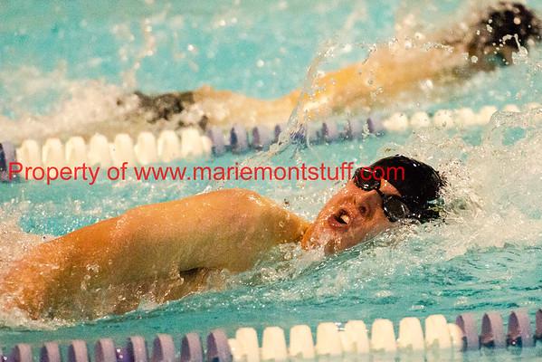 MHS Swimming 2015-2016
