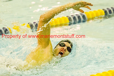 MHS swimming vs Tippecanoe 2017-12-12-56