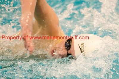 MHS Mens Swim Team Districts 2014-65