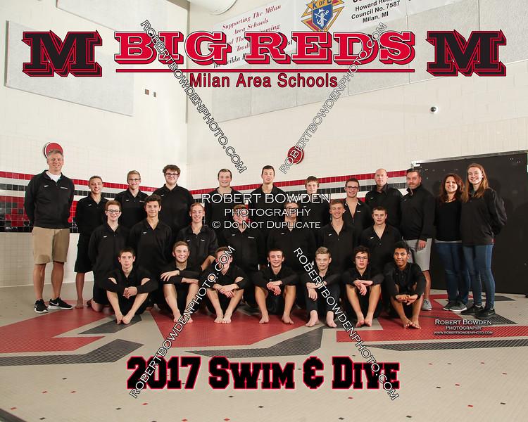 Milan Mens Swim and Dive 2017 Team 8x10